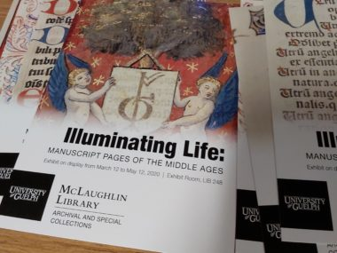 Illuminating Life: Manuscript Pages of the Middle Ages